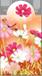 Mágneses könyvjelző virág